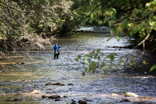 A man fishes in the Davidson River in Pisgah National Forest in Brevard, Oct. 4, 2018.