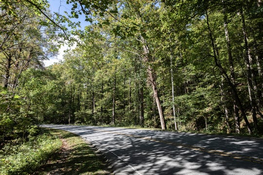 Route 276 in Pisgah National Forest in Brevard.