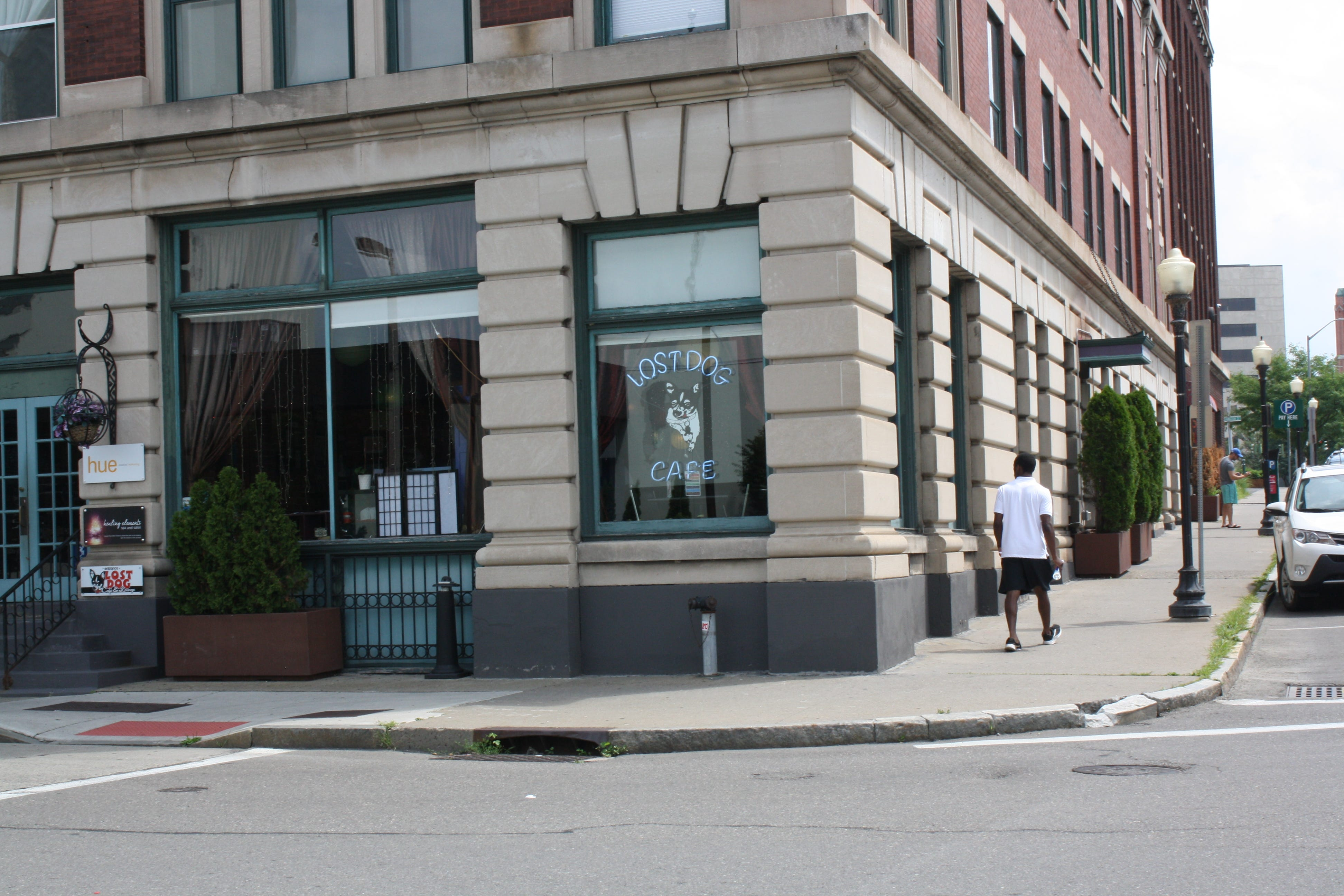 The Lost Dog Cafe & Lounge is located on 222 Water Street in Binghamton.