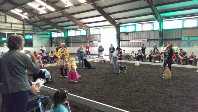 Canines compete at Dog Days at Lord Stirling Stable, scheduled for Sunday, Oct. 7.