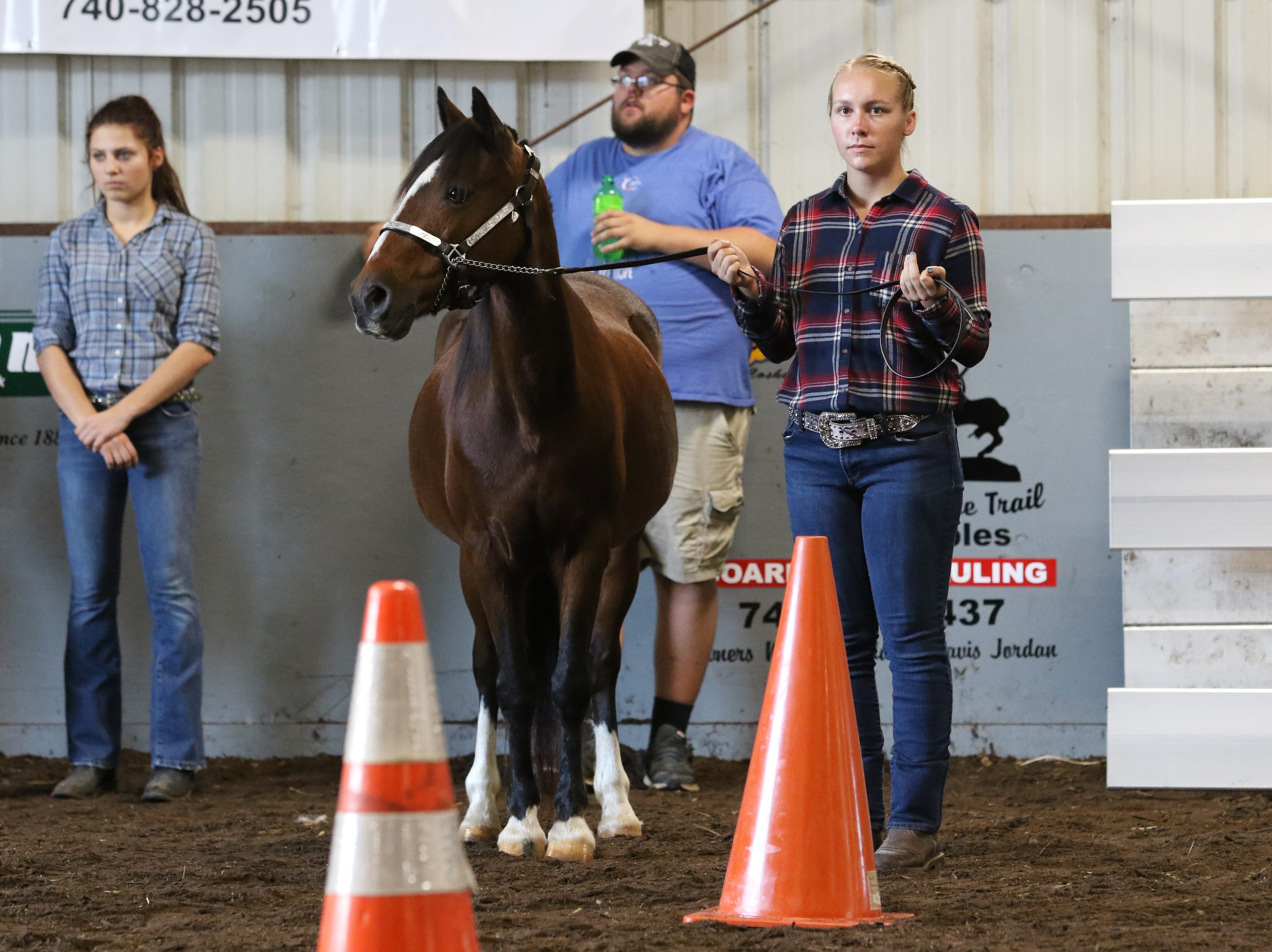 Sydney Zinkon waits to a show a horse during the Showman of Showmen at the Coshocton County Fair on Wednesday.