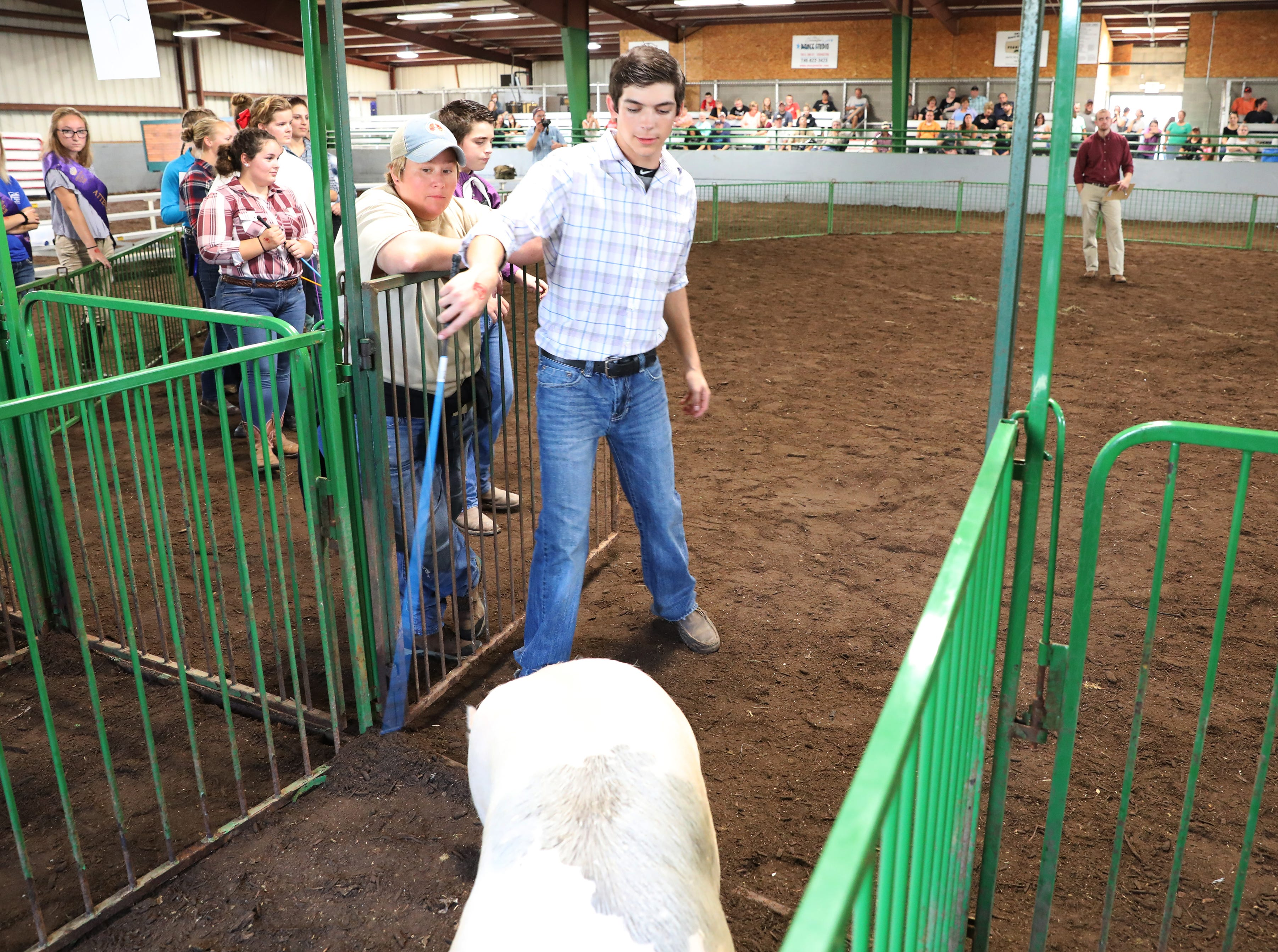 Justin Mason collects his hog to show during the Showman of Showmen at the Coshocton County Fair on Wednesday.