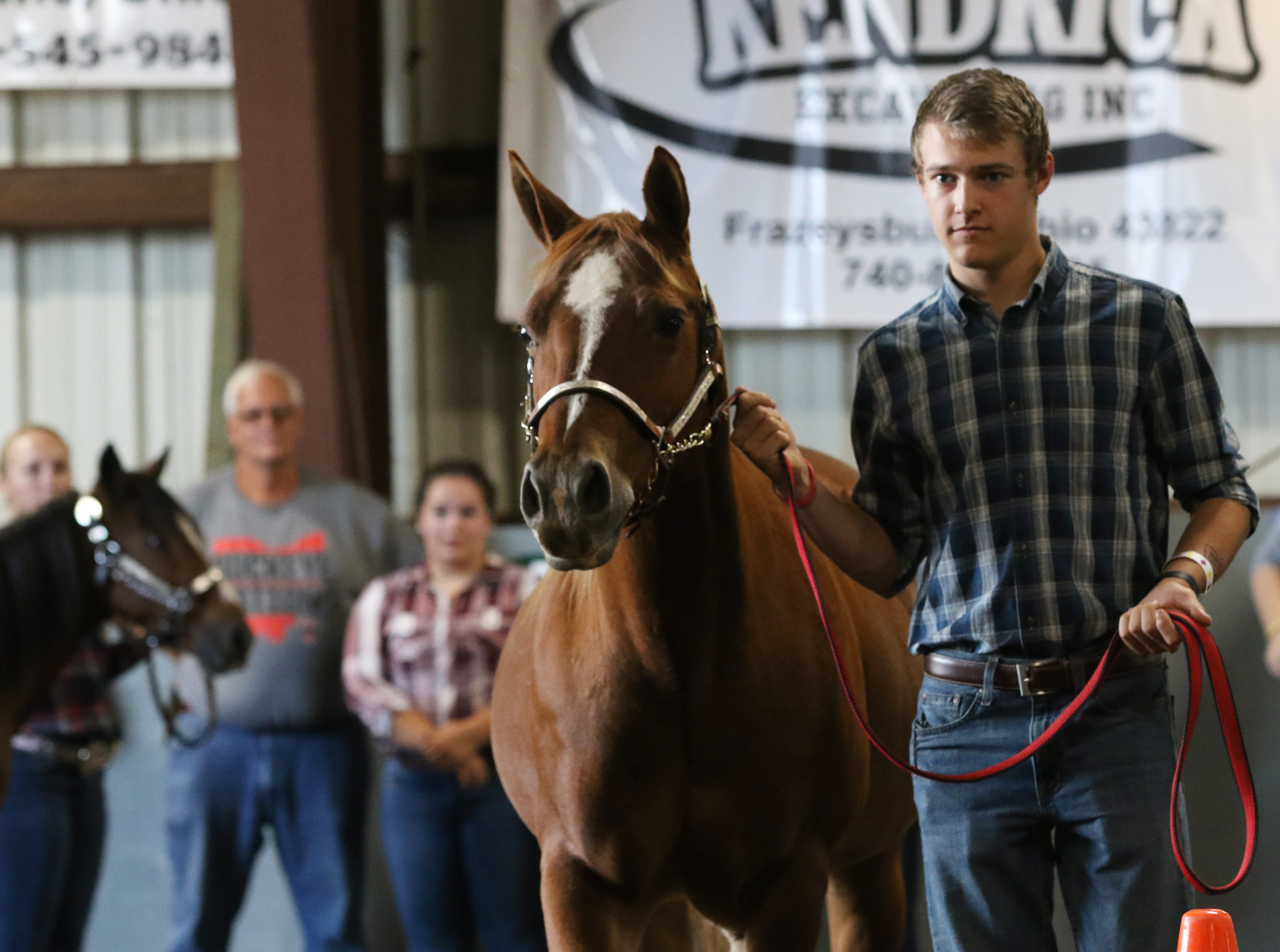 Ty Collins shows a horse during the Showman of Showmen at the Coshocton County Fair on Wednesday.