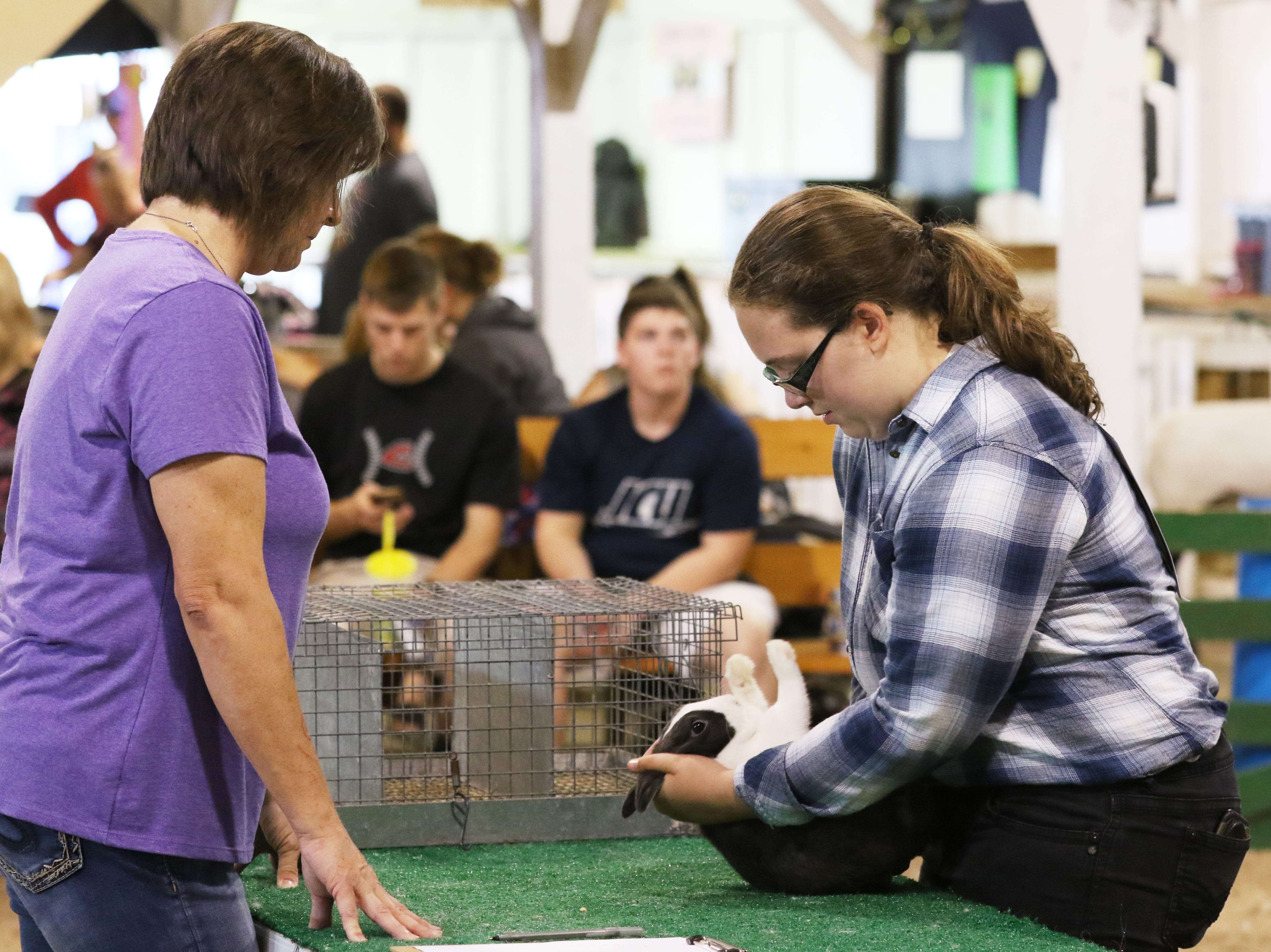 Emily Burrier shows a rabbit during the Showman of Showmen at the Coshocton County Fair on Wednesday.