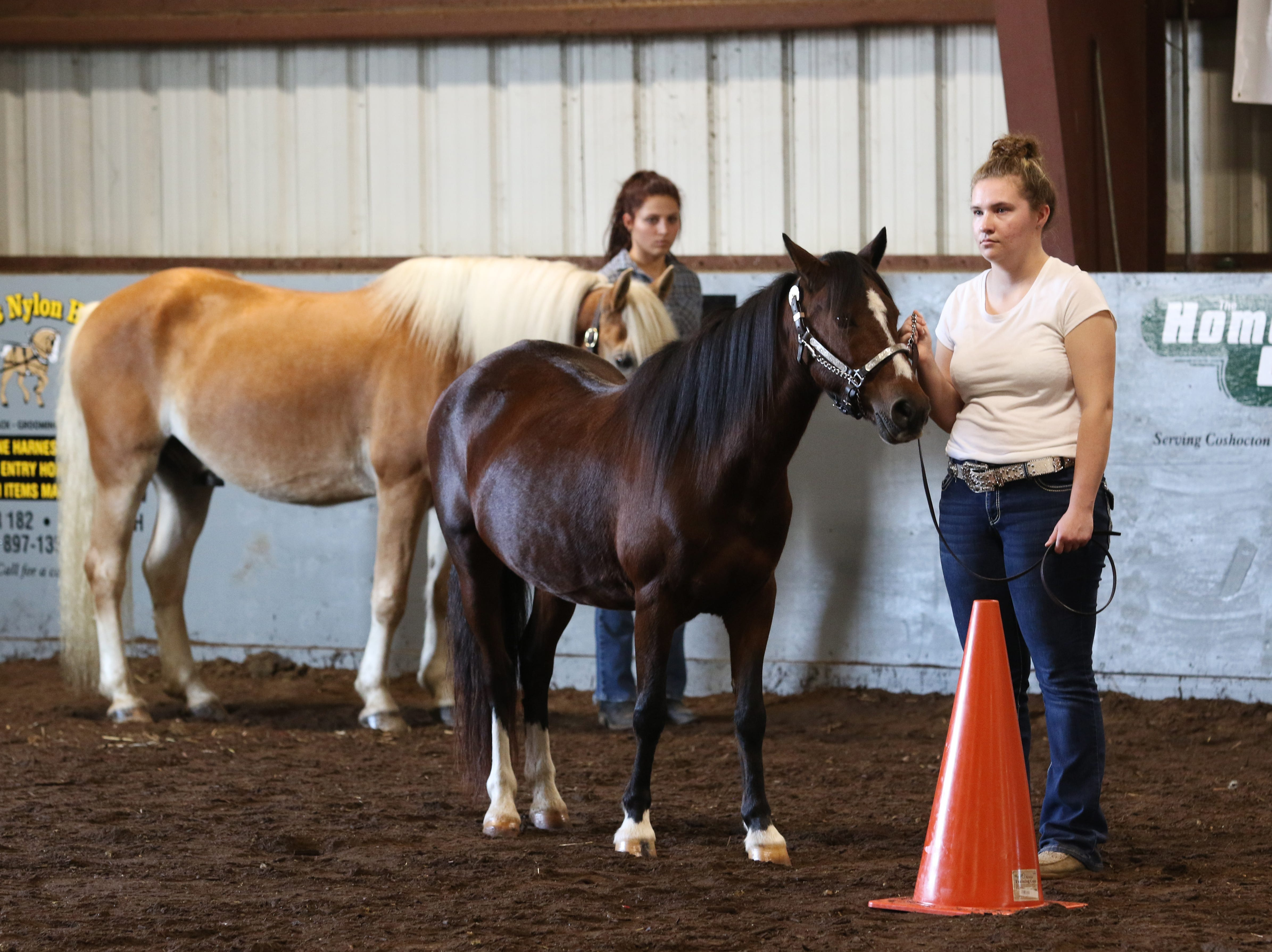 Shelby Cannon waits to show a horse during the Showman of Showmen at the Coshocton County Fair on Wednesday.