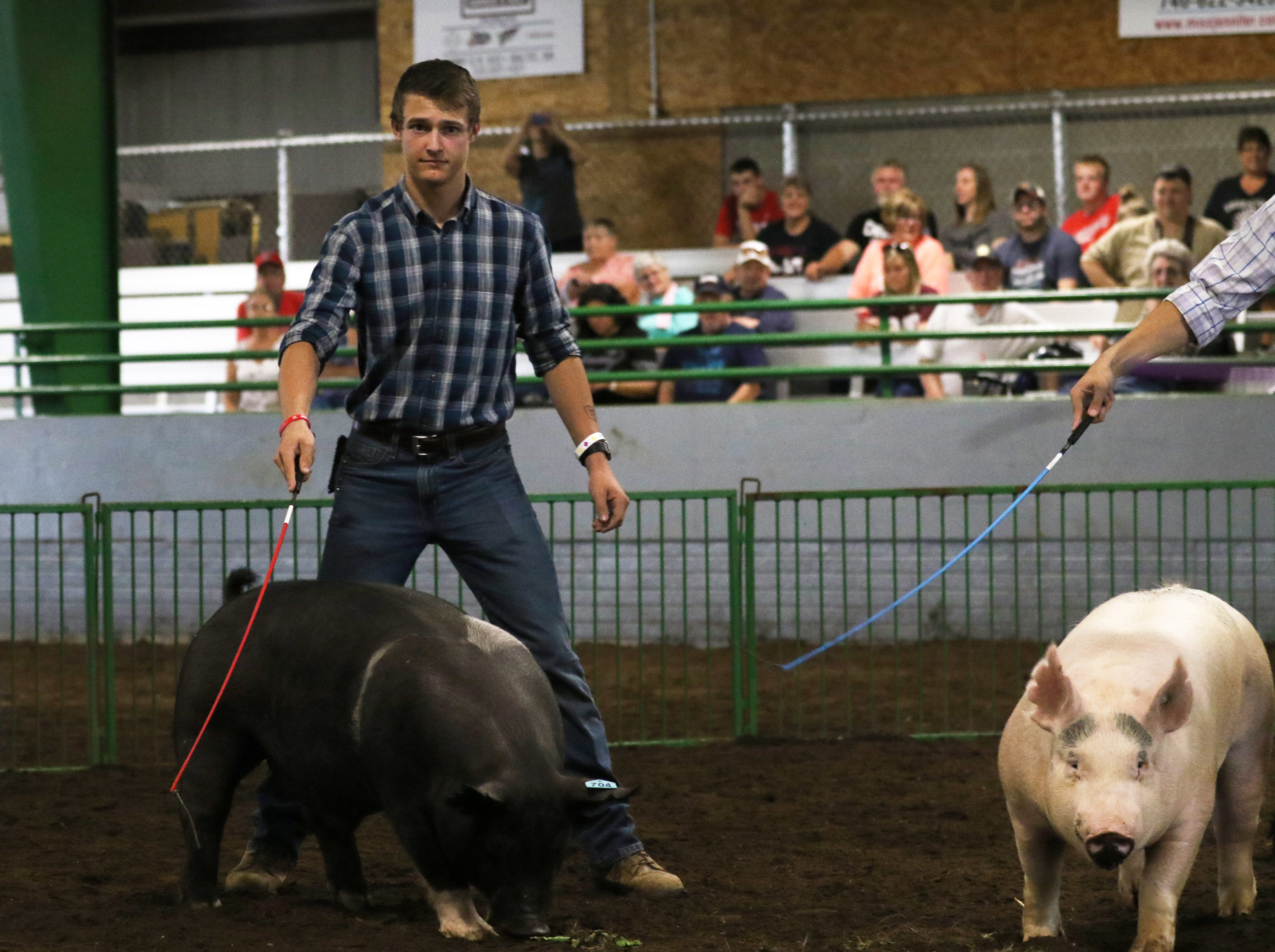 Ty Collins shows a hog during the Showman of Showmen at the Coshocton County Fair on Wednesday.