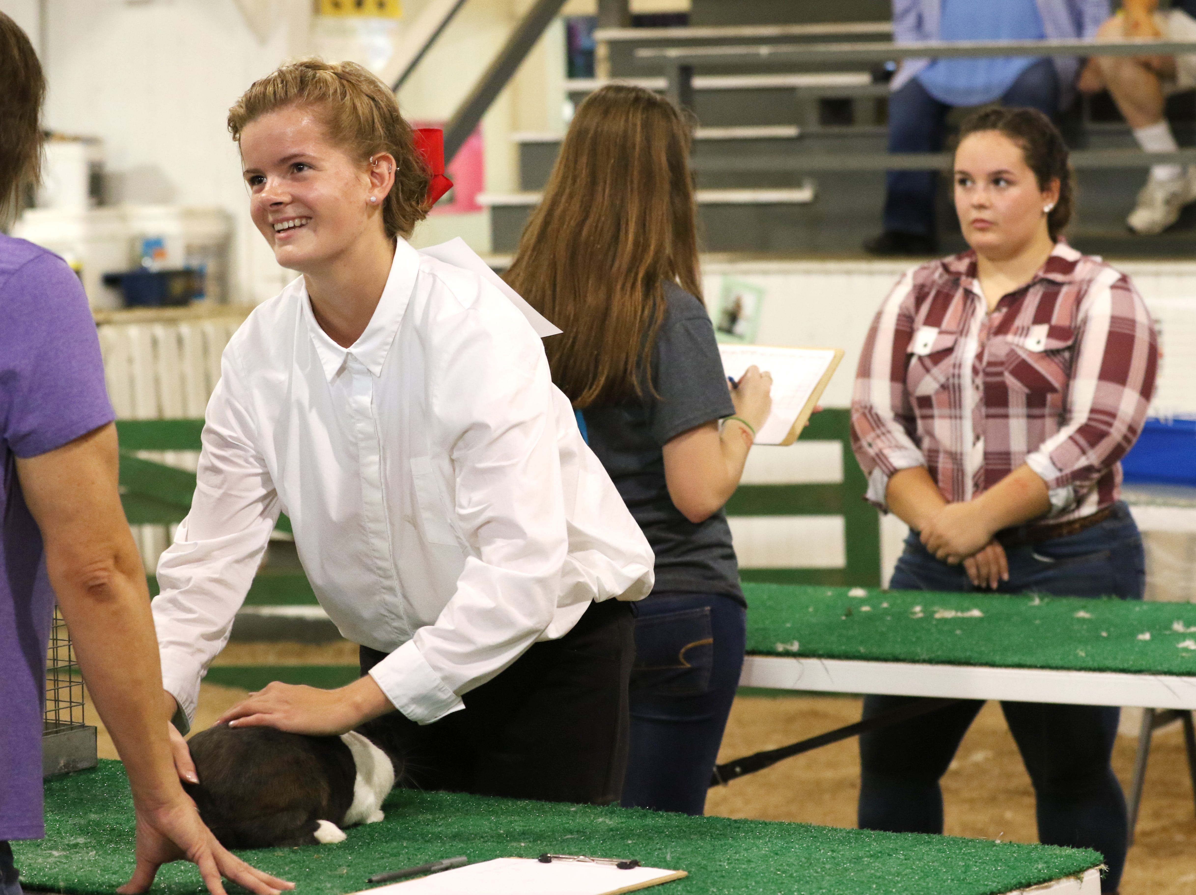 Belle Norman shows a rabbit during the Showman of Showmen at the Coshocton County Fair on Wednesday.