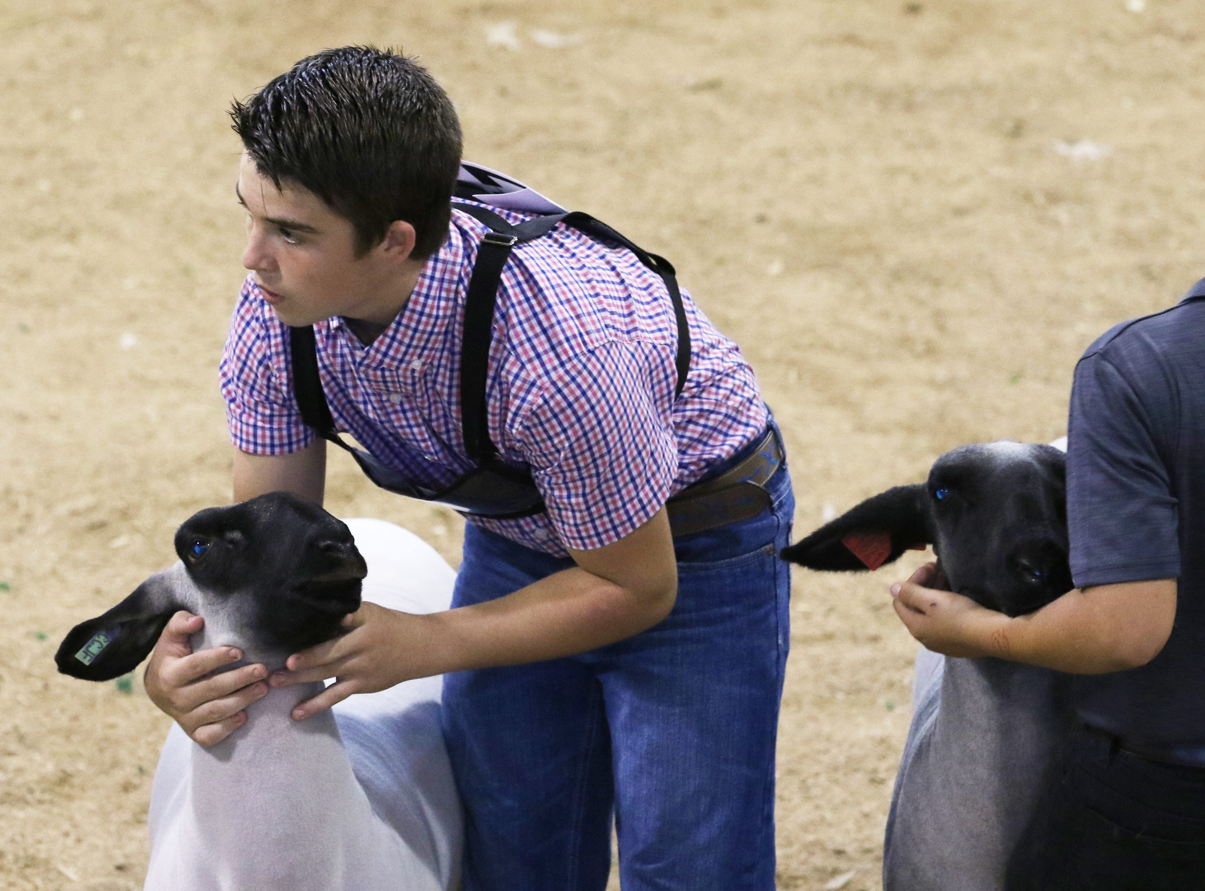 J.D. Herron shows a lamb during the Showman of Showmen at the Coshocton County Fair on Wednesday.