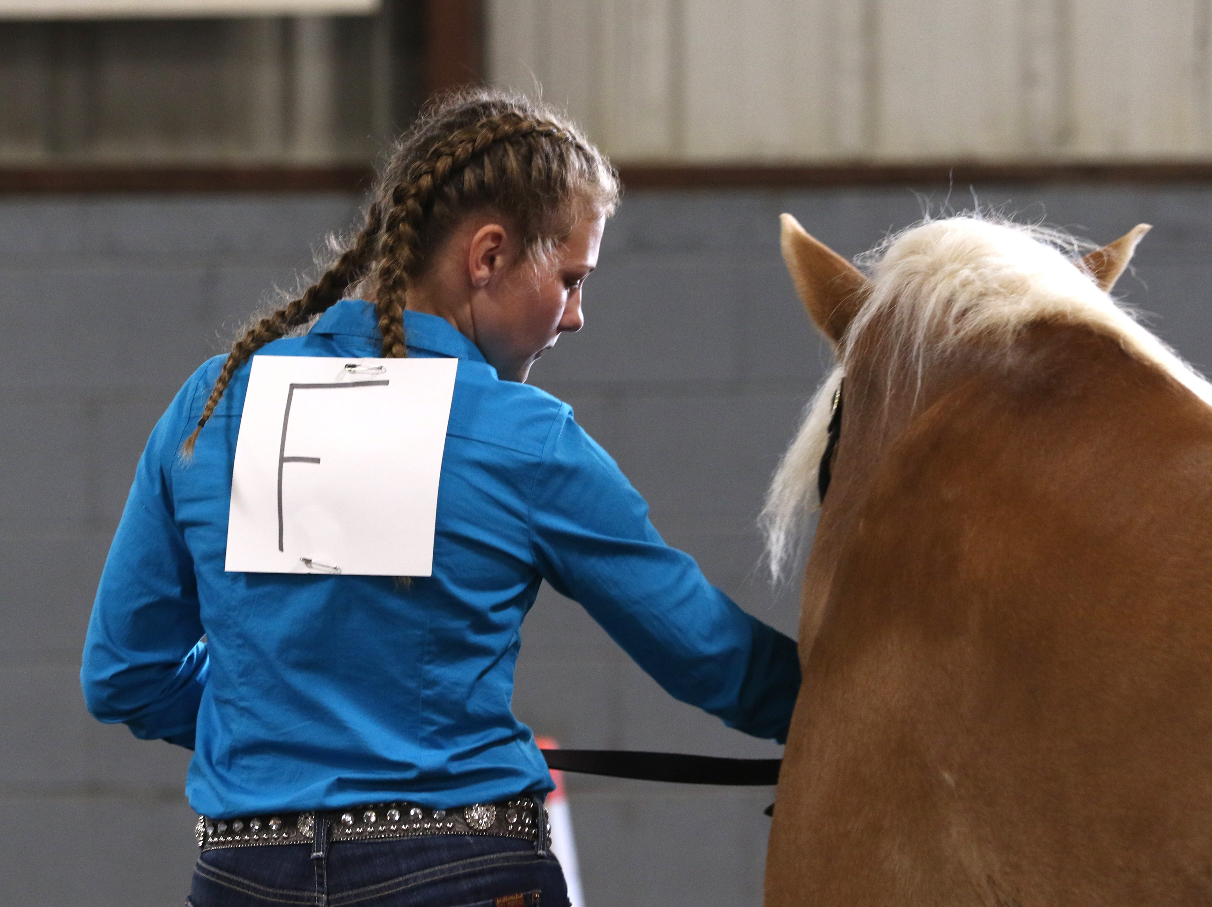 Abby Kellish shows a horse during the Showman of Showmen at the Coshocton County Fair on Wednesday.