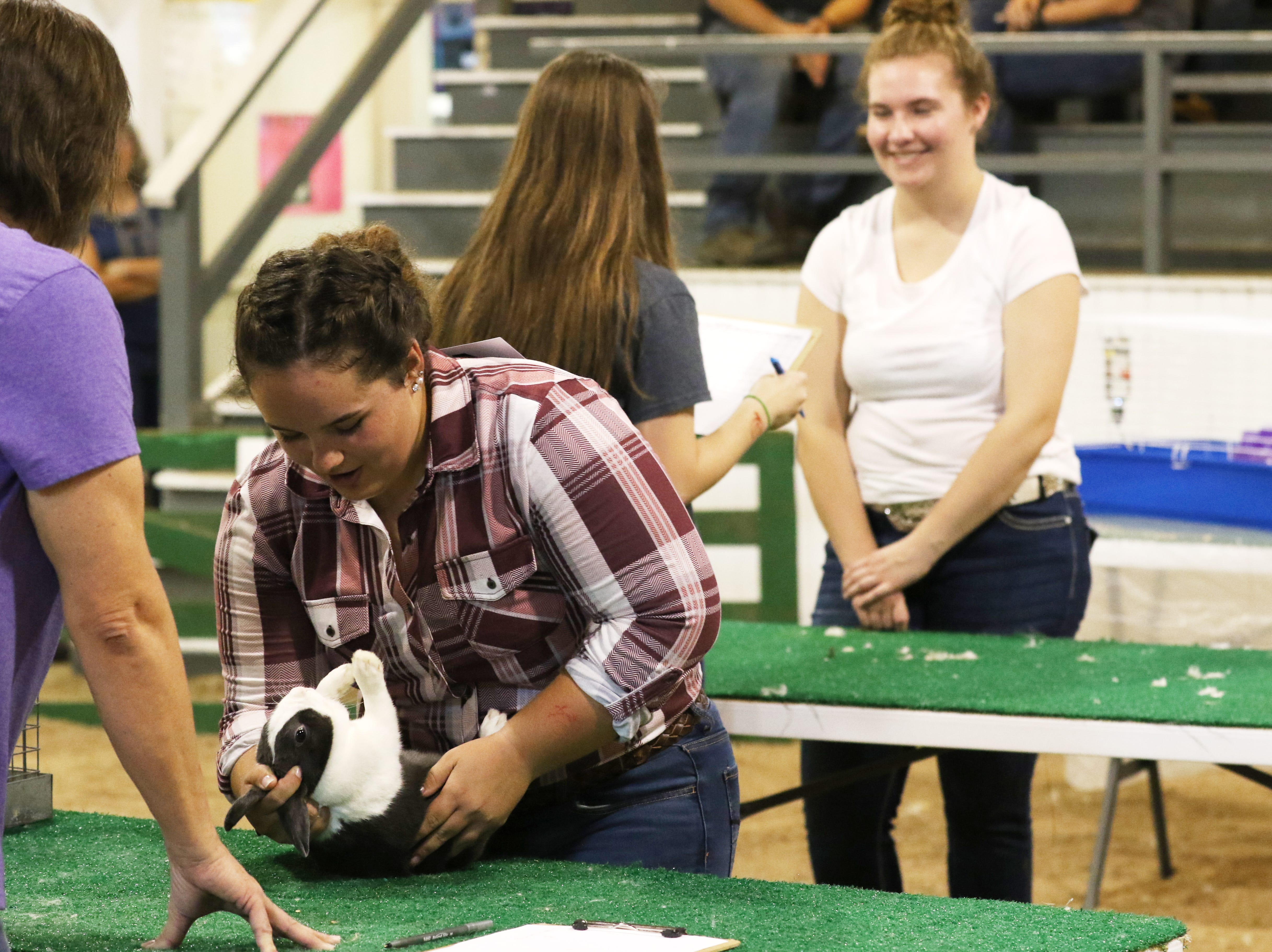 Hannah Nelson shows a rabbit during the Showman of Showmen at the Coshocton County Fair on Wednesday.