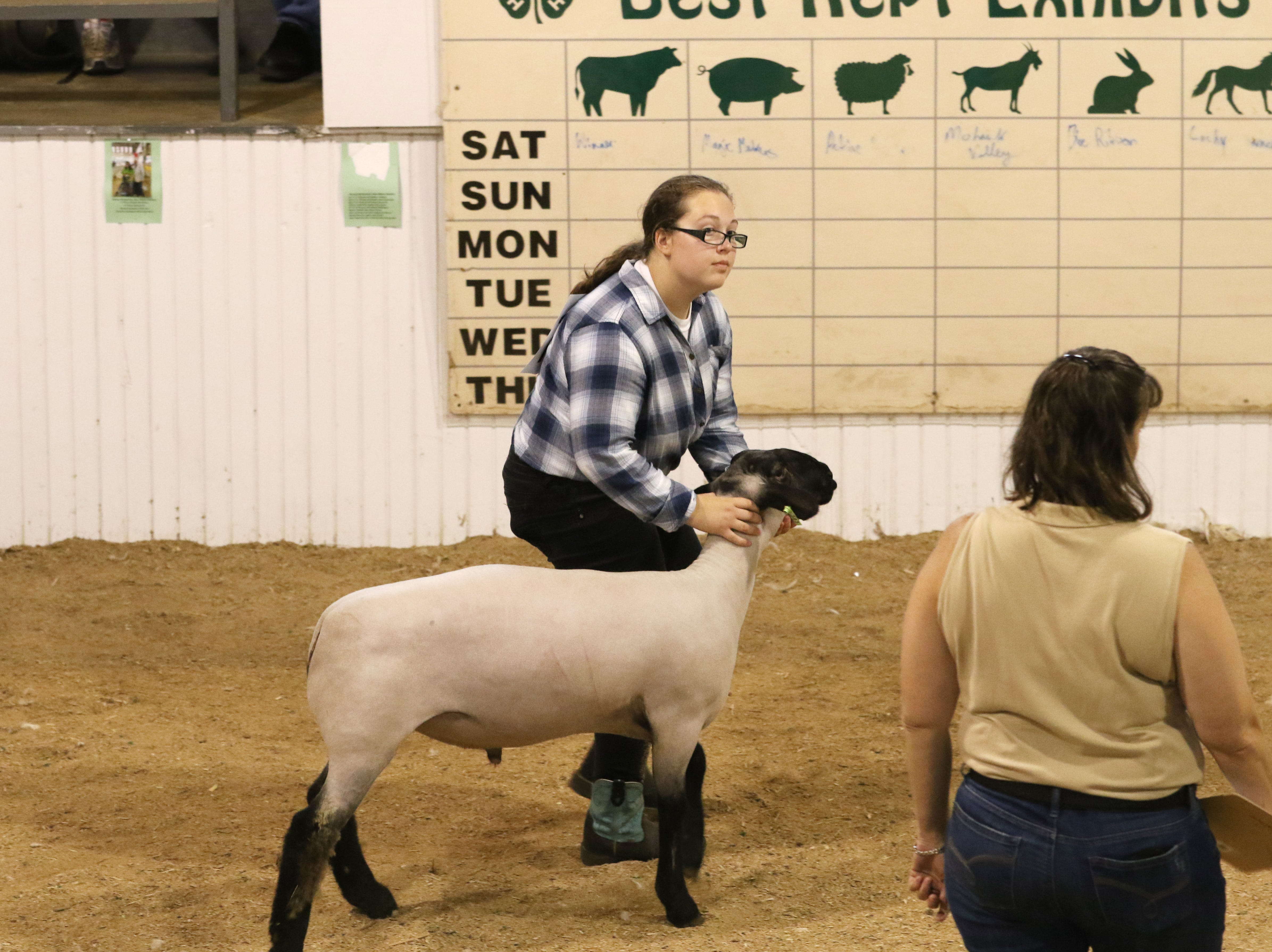 Emily Burrier shows a lamb during the Showman of Showmen at the Coshocton County Fair on Wednesday.