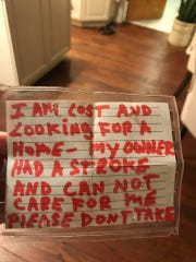 The note attached to Ghost's collar.