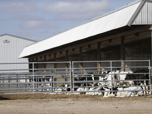 636579333051051741 Fon Cows 032918 Dcr001