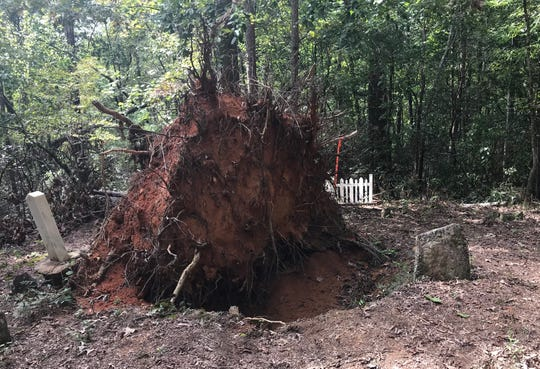 A fallen tree uprooted two graves here at the Winchester family cemetery off Scenic Highway 11 in Pickens County.