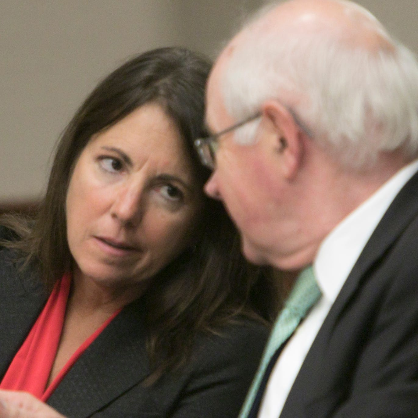 Livingston County Judge Theresa Brennan files motion to remove Judicial Tenure Commission