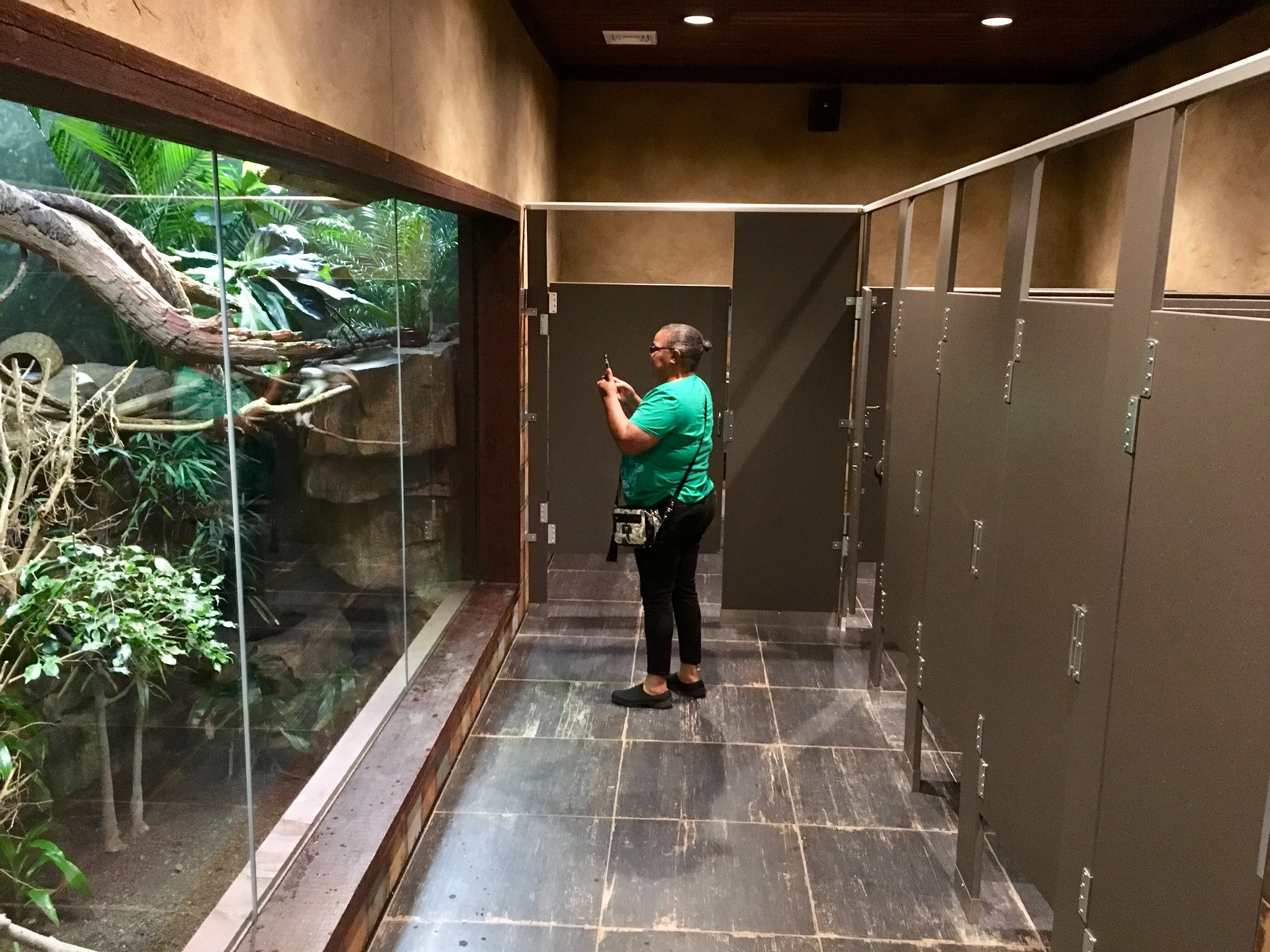 Visitor Lucille Covington takes pictures of the monkeys in an exhibit inside a women's restroom at Nashville Zoo at Grassmere