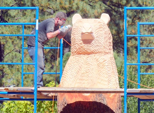Scaffolding was needed to reach the part of the pine tree designated to become the bear's head.