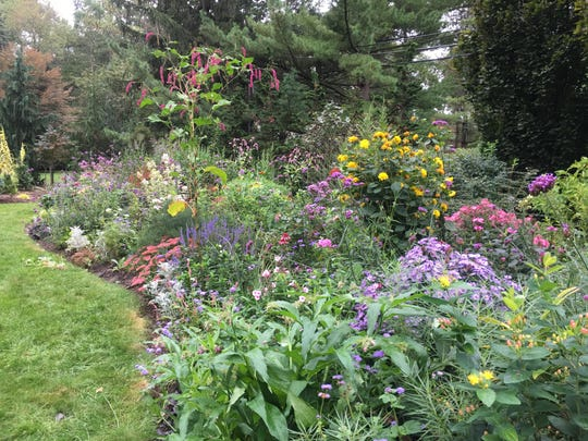 """Banks of beautiful flowers of all heights line the Hofleys' gardens. """"Grow it to know it"""" is their theme. They are especially interested in plants which are not appealing to deer."""