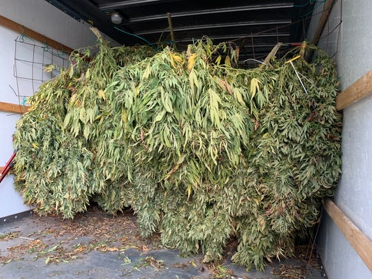 CHP Officer Mike Bell's traffic stop netted nearly 850 pounds of pot, pictured. It was found in the back of a rental truck.