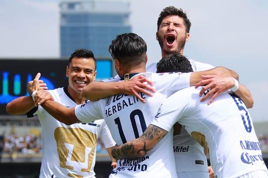 Jugadores de Pumas celebran tras anotar un gol.