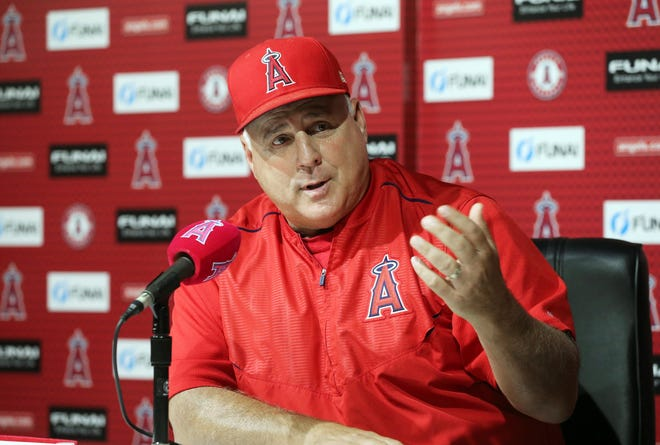 Former Los Angeles Angels manager Mike Scioscia may be a candidate to replace Buck Showalter as the manager of the Baltimore Orioles. AP FILE PHOTO
