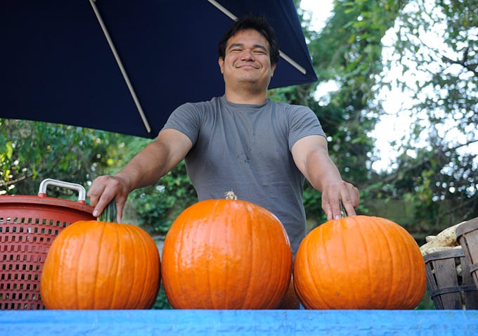 Farmer Dennis Santaniello sorts out pumpkins at his roadside farm market on Oak Road in Vineland.