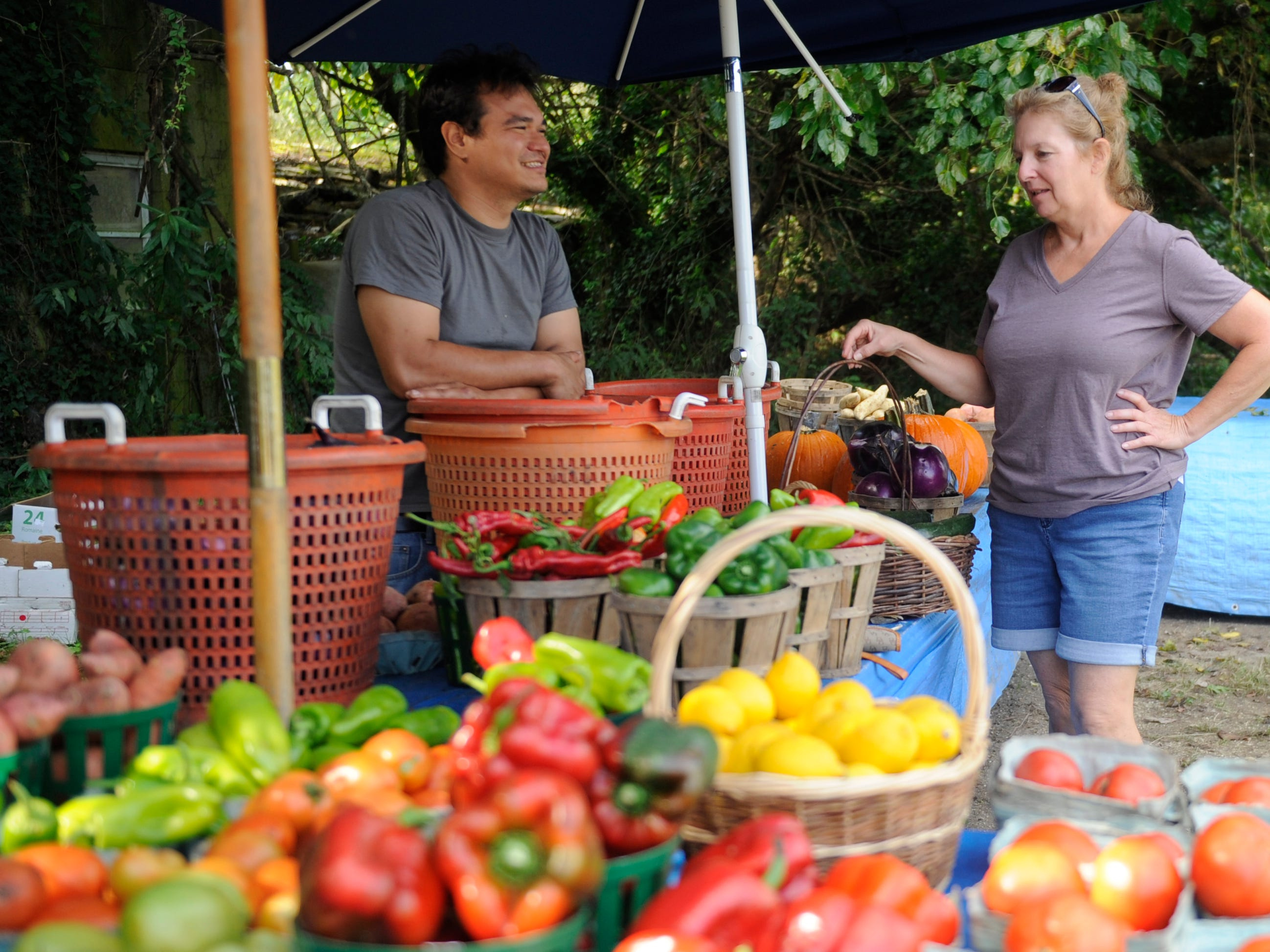 Farmer Dennis Santaniello talks about fresh fall produce with customer Mary Faith of Estell Manor at his roadside farm market on Oak Road in Vineland on Thursday, October 4, 2018.