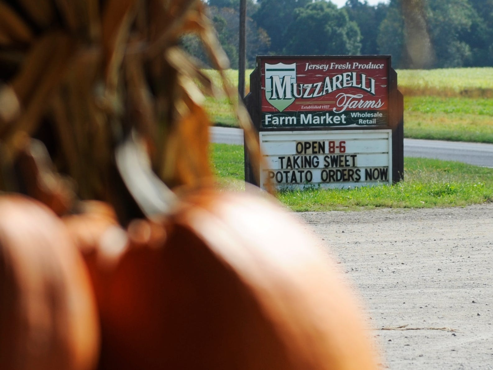 Muzzarelli Farms on East Oak Road in Vineland sells a large variety of fresh produce including pumpkins just in time for Halloween.