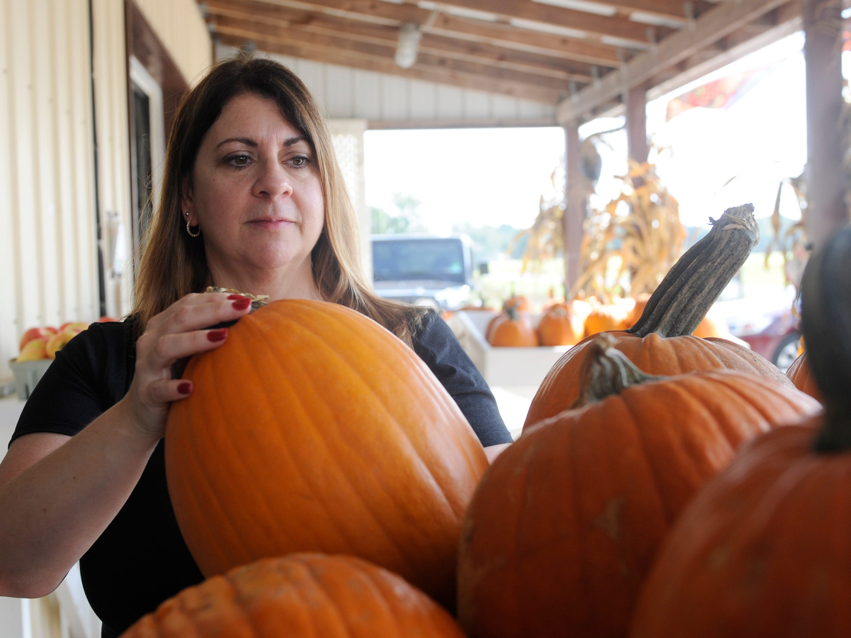 Long time, loyal customer, Anita Cavalier of Vineland, buys a pumpkin at Muzzarelli Farms on East Oak Road on Thursday, October 4, 2018.