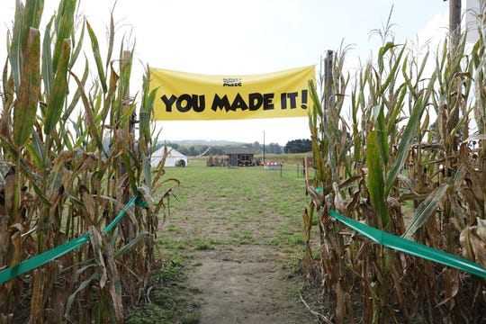 Navigate through 20 acres of towering corn stalks at night at the Applestem Corn Maze and Pumpkin Patch.