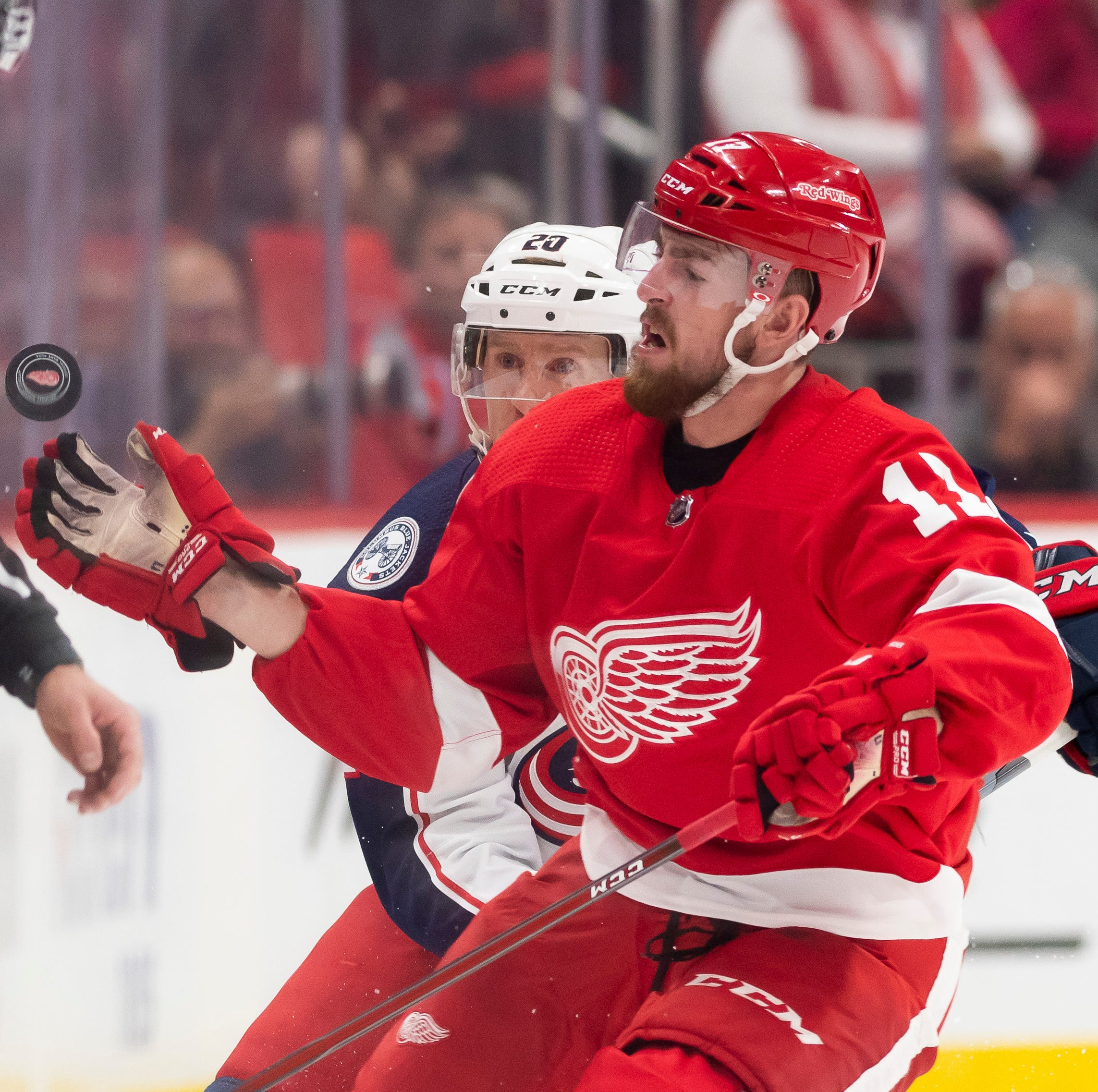 'Unknowns' could help Red Wings exceed expectations