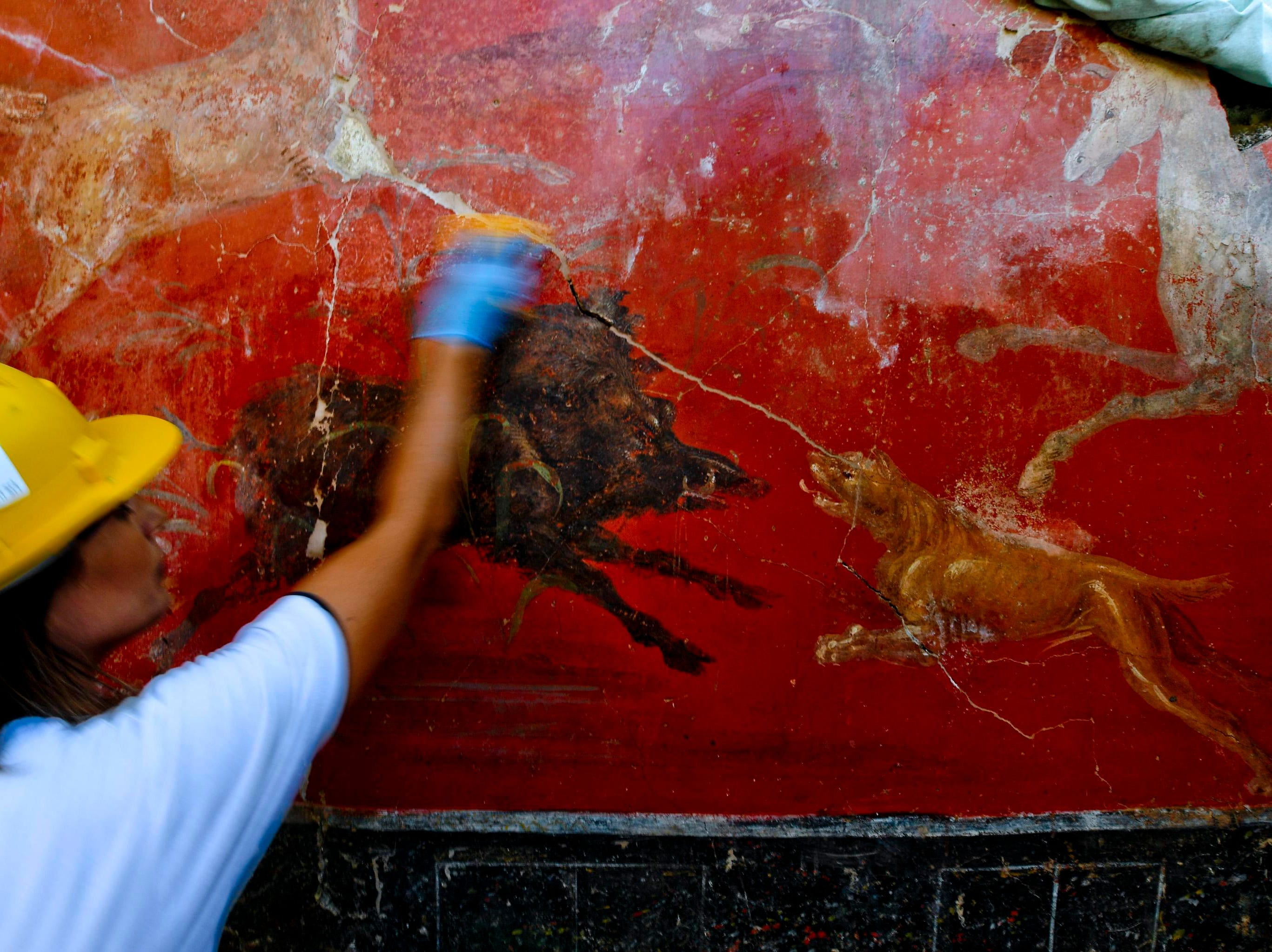 """An archeologist works on a fresco in a house discovered during excavation works in Pompeii, Italy, presented to journalists Friday, Oct. 5, 2018.  Archaeologists excavating near Porta Vesuvio, in an unexplored part of Pompeii, have discovered a richly painted house with an """"enchanted garden,"""" with incredibly intact frescos and a majestic lararium, a shrine to the guardian spirits, one of the largest ever discovered in the city buried when Mt. Vesuvius erupted in 79 AD."""