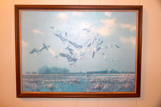 "A faded copy of ""Returning to Rosendale,"" a painting by Milwaukee wildlife artist Owen Gromme, hangs in a farmhouse near Rosendale, Wisconsin. The painting depicts a hunt experienced by Gromme and Dick Steinman of Mequon as snow and blue geese descended on a marsh near Rosendale.."