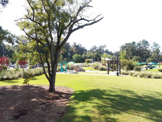 The community greenspace of Cascades Park is an example of what can exist across our city as a wider network of parks large and small.