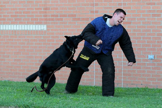SSgt. Davis Benjamin is the victim during the police dog demonstration put on by the Sheppard AFB security squadron  during Thursday nights Burkburnett ISD STEM Fair  held at Burkburnett High School.  The Science, Technology, Engineering, and Math fair was free for the public to attend