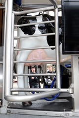 Robotic milkers drew plenty of attention during World Dairy Expo in Madison.