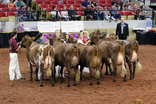 Will safety concerns over the coronavirus force the cancellation of the 53rd annual World Dairy Expo? We will know by July 1.