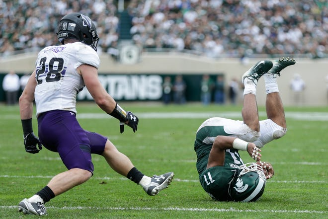 Michigan State running back Connor Heyward falls on the ground after making a catch against Northwestern  during the first half at Spartan Stadium in East Lansing, Saturday, Oct. 6, 2018.
