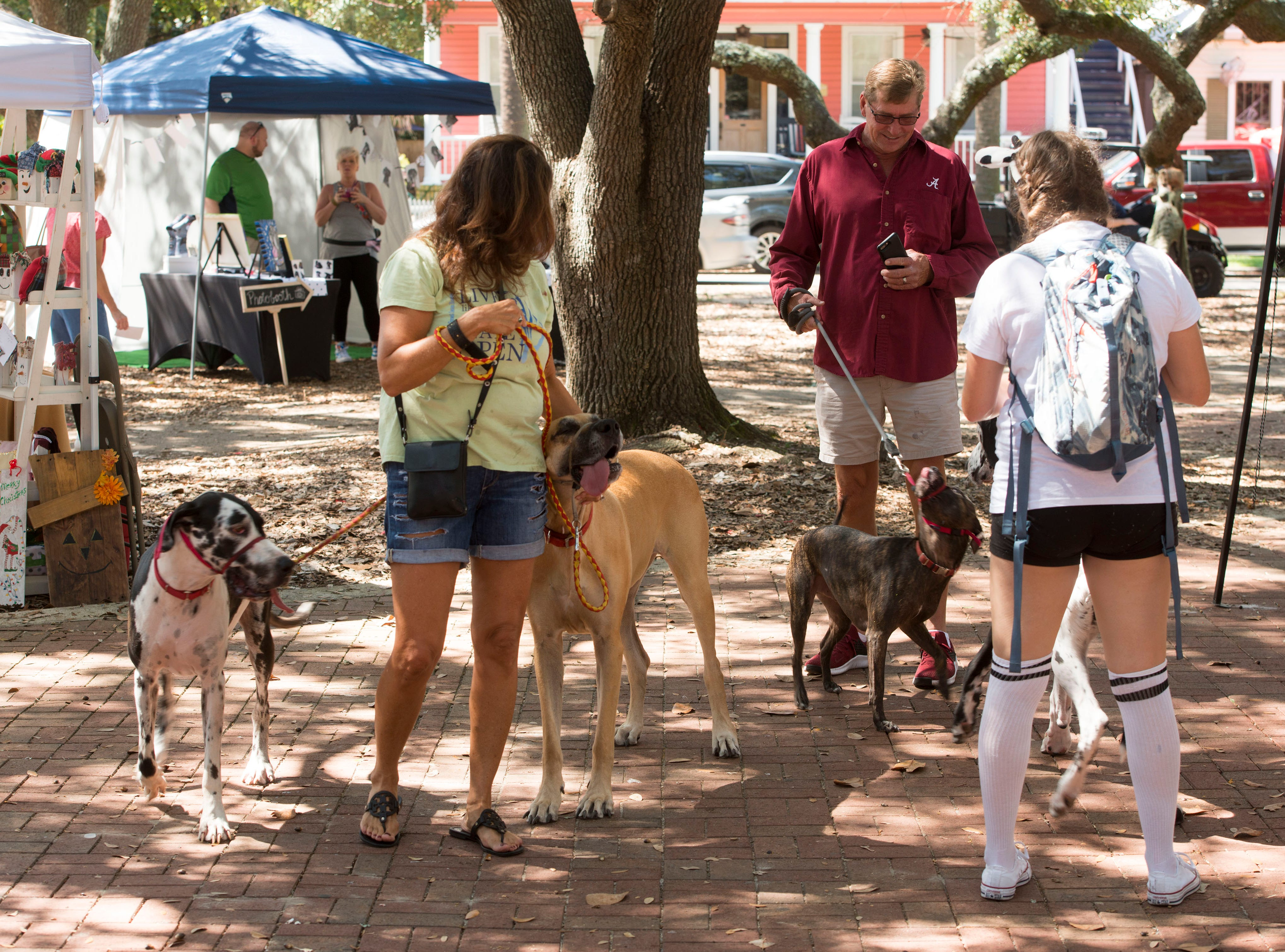Great Dane owners and admirers check out the vendors Saturday, October 6, 2018 during the third annual DaneTober Fest celebation and fundraising event at Seville Square. The event included music, per related merchandise,food and around two dozen aoptable Great Danes.