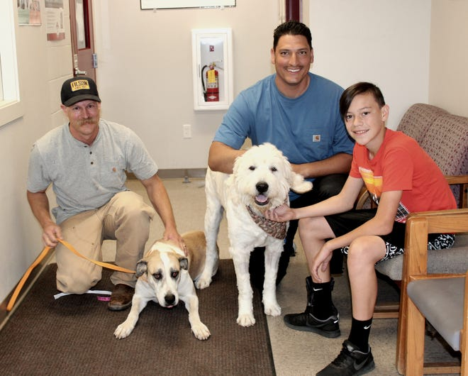 U.S. Forest Service firefighters Conner Mehl, left, pets his Anatolian shepherd mix named Ella while Victor Guillen poses with his poodle mix pooch named Zeus that they adopted Friday from Haven Humane Society's shelter. The boy at right is unidentified.
