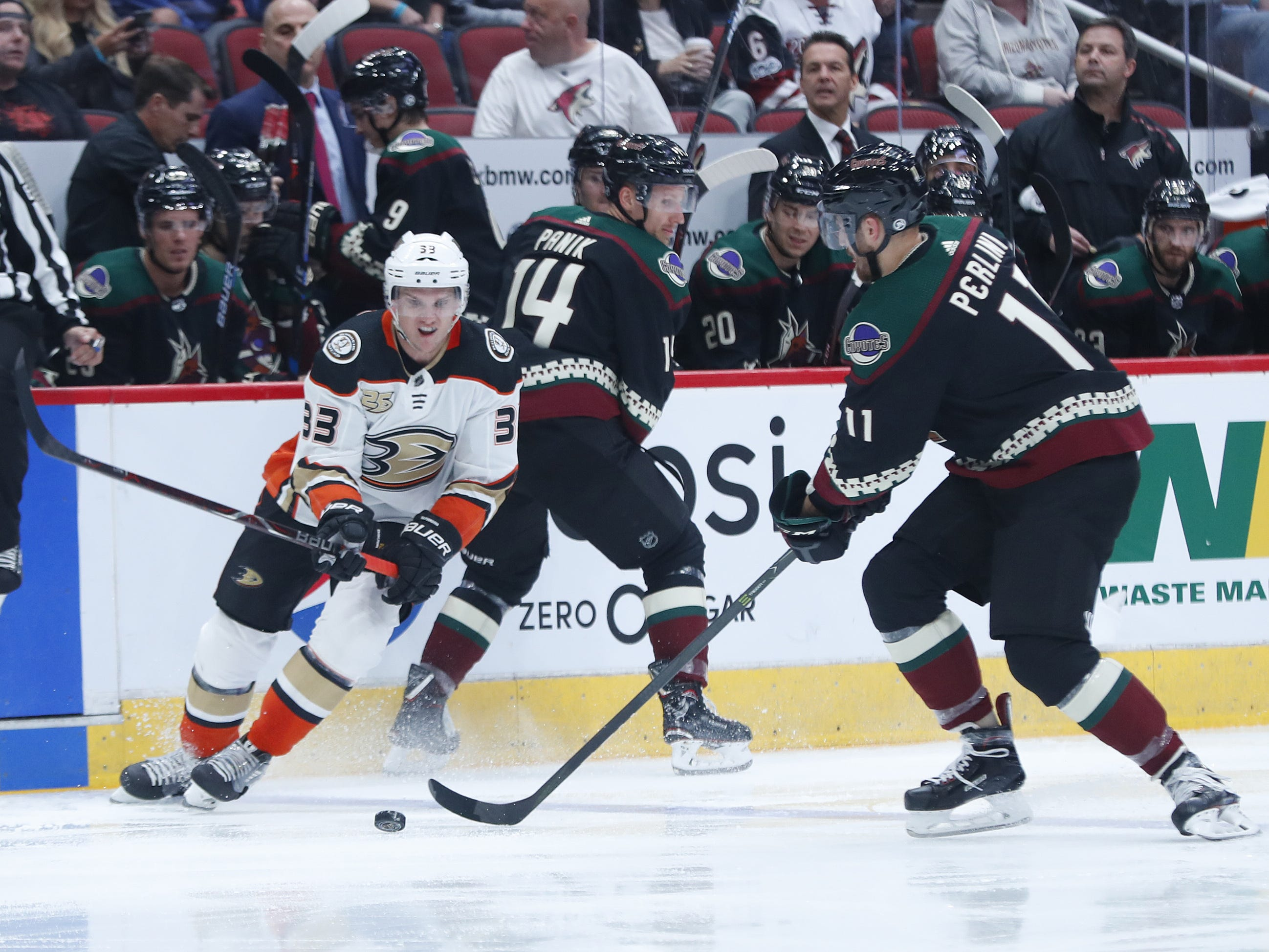 Coyotes Brandan Perlini (11) recovers a puck lost by Ducks Jakob Silfverberg (33) during the second period at Gila River Arena in Glendale, Ariz. on October 6, 2018.