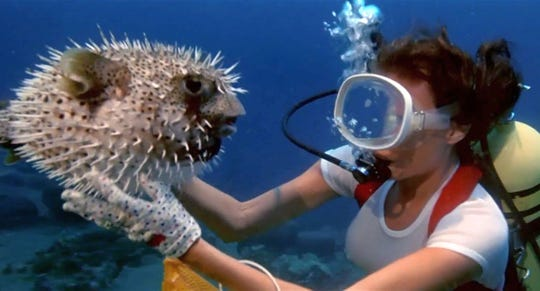 """Jacqueline Bisset says she was scared filming parts of """"The Deep."""""""