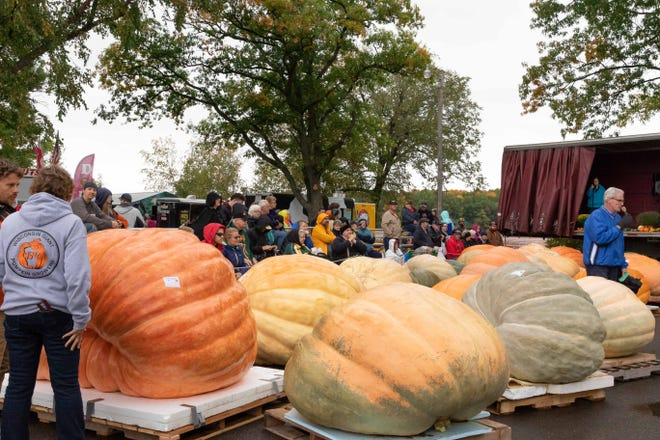 The annual Nekoosa Giant Pumpkin Fest will be held on October 2-3 at Riverside Park in Nekoosa.