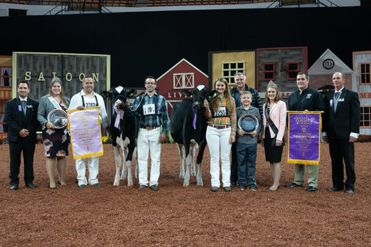 Second in the Six-Year-Old Cow Class, Reserve Senior Champion and Reserve Grand Champion of the International Holstein Show was Weeks Dundee Anika, exhibited by MilkSource Genetics, LLC of Kaukauna, Wis.