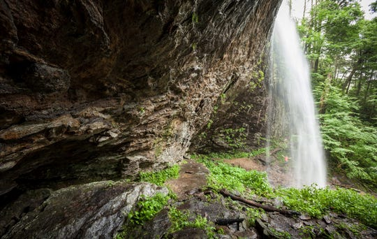 The Big Ivy area of Pisgah National Forest in Buncombe County is under consideration for special protection in the Nantahala Pisgah National Forests Plan Revision