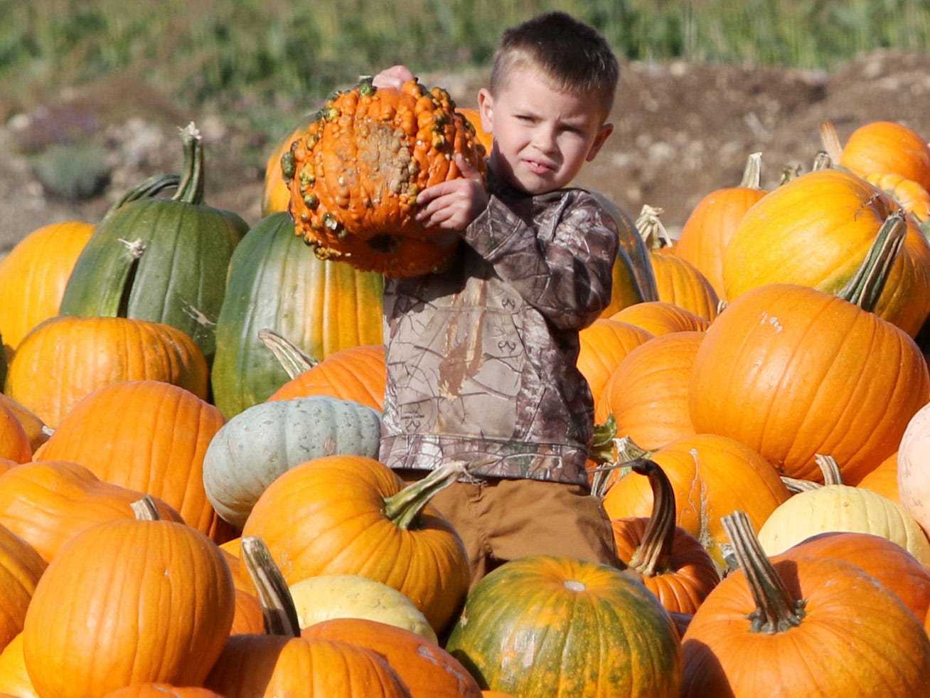 Braxton Marshall, 6, of Shelton, holds up his choice after exploring a pile of pumpkins at Hunter Farms.