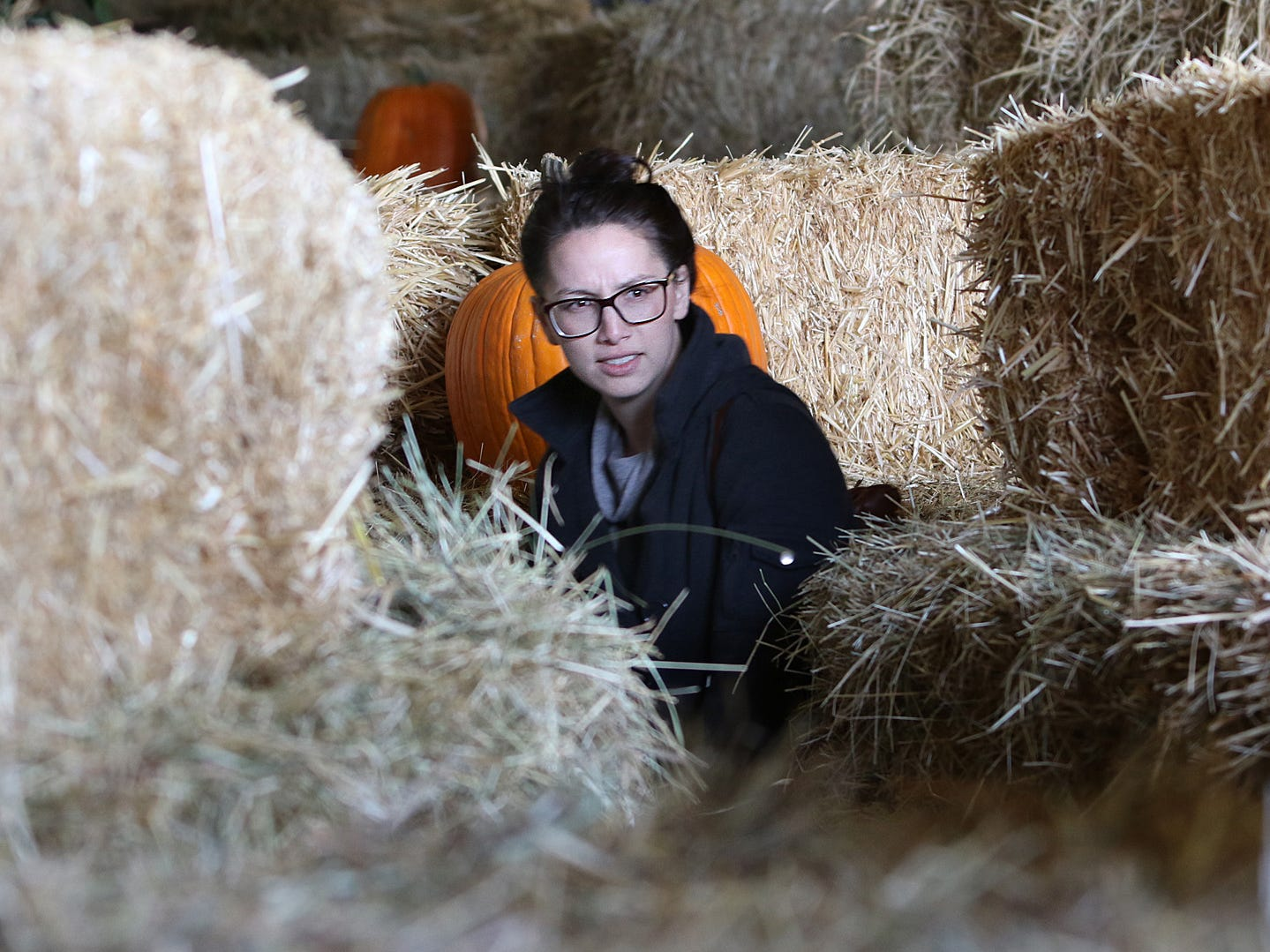 The hay maze is an entertaining exercise for pumpkin patch visitors of all ages.