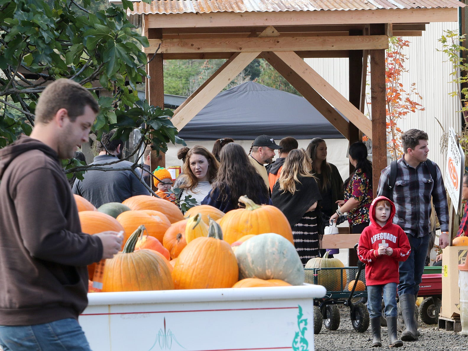 Hunter Farms, located near Union on Highway 106 next to the Skokomish River, is having its Pumpkin Patch festivities October 1-31, daily from 9:00am to 6:00pm.
