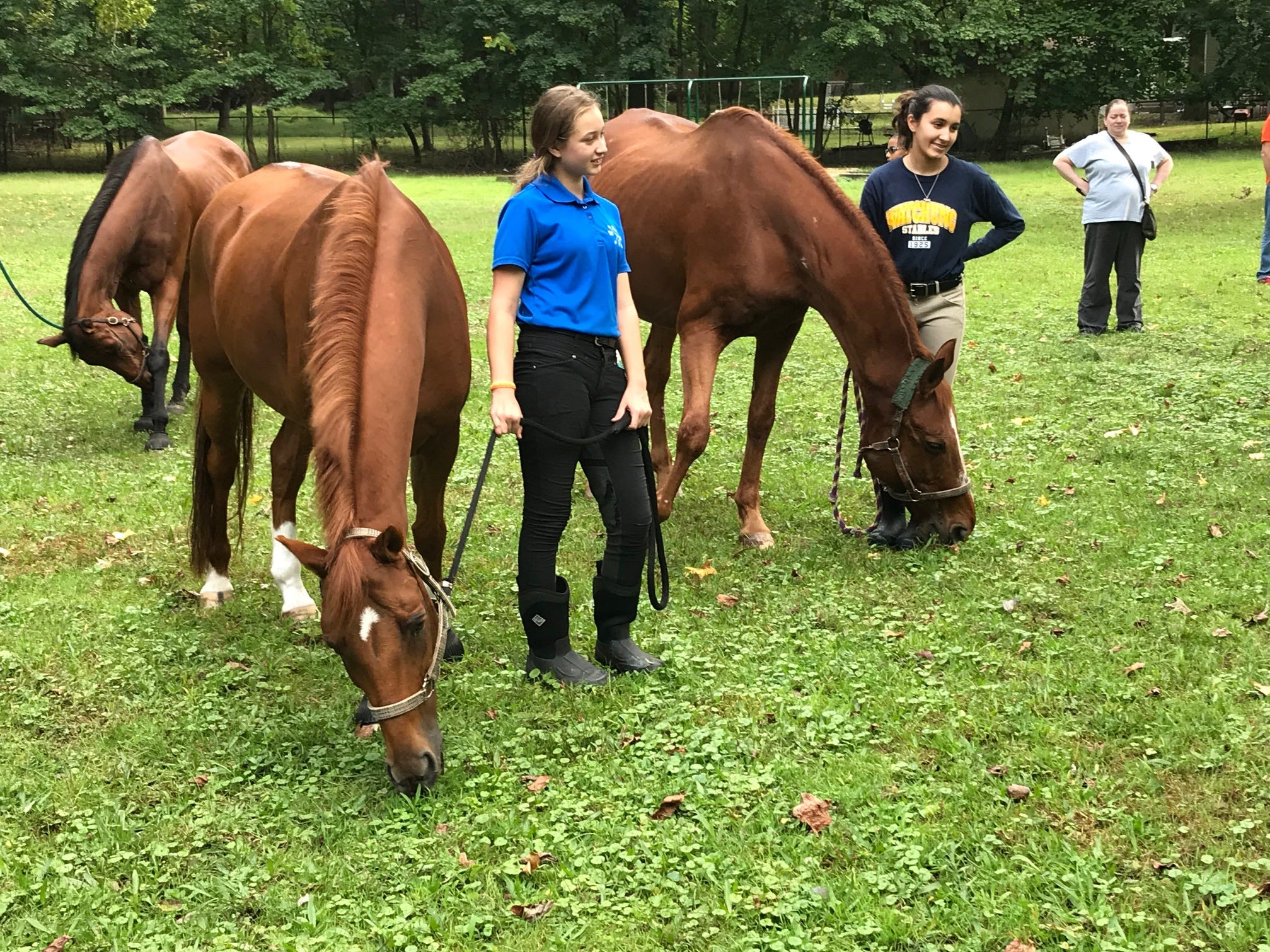 These horses were among a group of animals blessed during Sunday's Animal Initiative Committee's Celebration of Animals at Leland Avenue Park in Plainfield