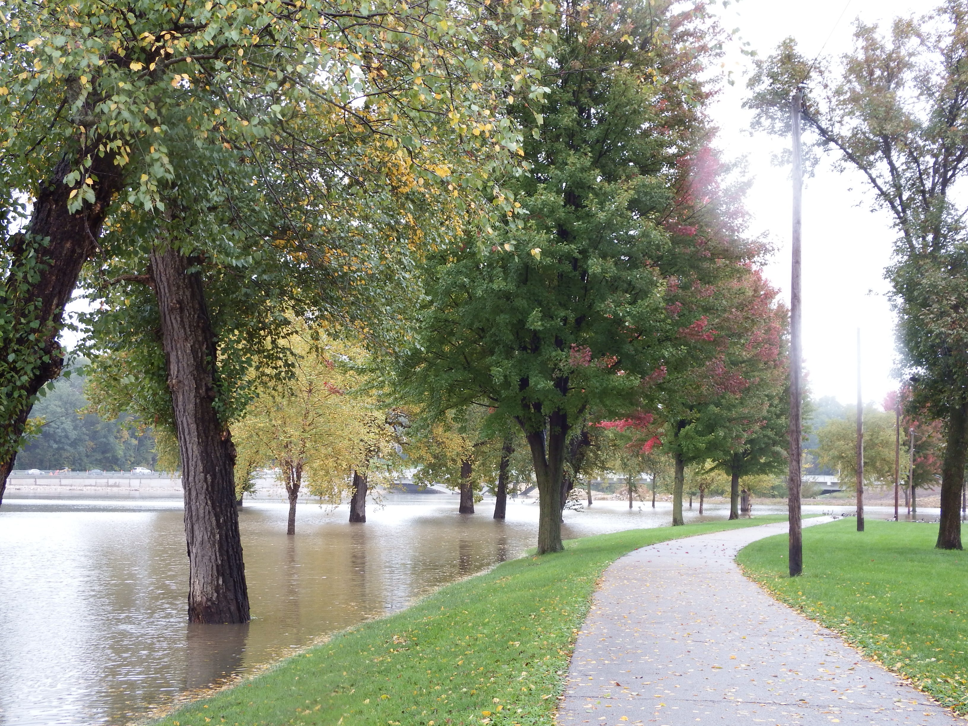 Flood water encroaches on City Park.
